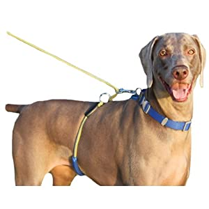 Paws Aboard Monster Walker Anti No Pull Large Dog Harness/Leash Blue/Yellow
