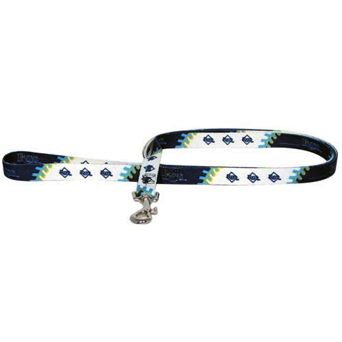 Mlb Tampa Bay Rays Pet Lead, Large, Team Color front-792987