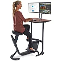 LifeSpan Unity Exercise Bike Desk