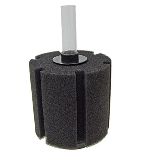 XY-380 Aquarium Fish Tank Biochemical Sponge Filter, 4-1/2-Inch (Nitrogen Cycle For Fish Tank compare prices)