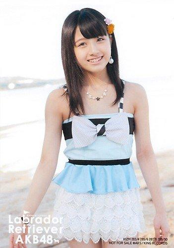 AKB48 公式生写真 ラブラドール・レトリバー 通常盤 封入特典 水着Ver. B 【大和田南那】