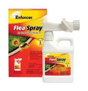 enforcer flea spray insects rtu 16