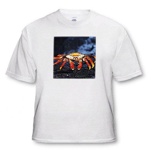 Sally Lightfoot Crab,Grapsus grapsus,Santiago IslaIslandnd Galapagos - Toddler T-Shirt (2T)