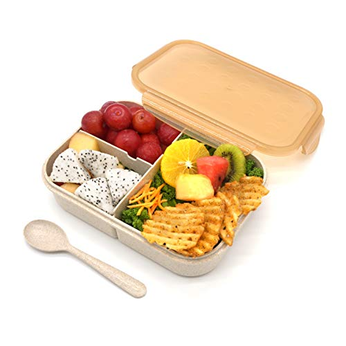 Bento Box for Adults,Lunch Container for Kids,3 Compartments Portion Lunch Box ,Food-Safe Materials,BPA-free,Leak-proof  (Includes Flatware, Champagne)