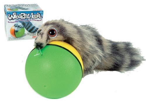 Animal Chase Ball ---Weasel Ball