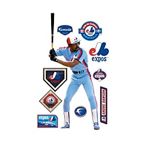 MLB Montreal Expos Andre Dawson vs. Washington Nationals Wall Graphic by Fathead