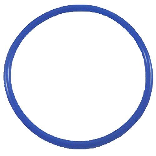 Hayward Chlorinator O Ring Lubricant