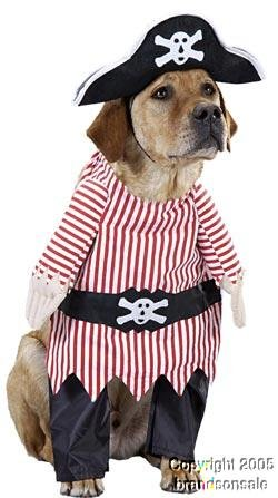 Pet Pirate Dog Halloween Costume For Small Dogs