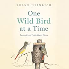 One Wild Bird at a Time: Portraits of Individual Lives Audiobook by Bernd Heinrich Narrated by Rick Adamson