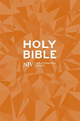 NIV Popular Paperback Bible: New International Version (Bible Niv)