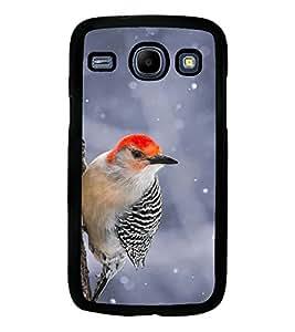 Printvisa Black And Red Cuckoobara Bird Back Case Cover for Samsung Galaxy Core i8262::Samsung Galaxy Core i8260