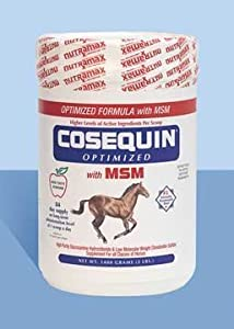 Nutramax Cosequin Equine Optimized with MSM, 1400 Gram Container