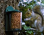 Metal Squirrel Feeder PLUS 400g Peanuts