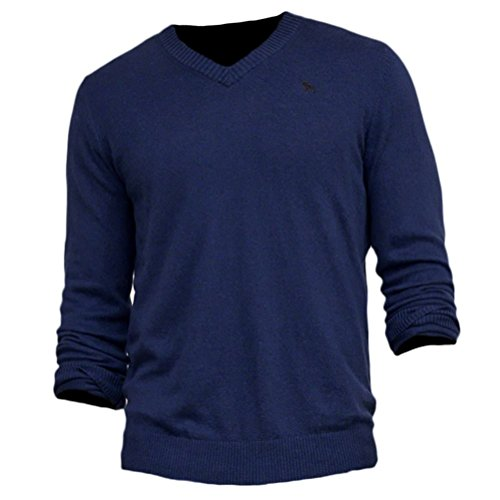 abercrombie-mens-slim-fit-v-neck-cashmere-blend-sweater-jumper-pullover-size-l-blue-617454731