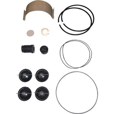 Fill-Rite 5200KTF1828 Fuel Transfer Pump Repair Kit for Series 5200 гантель неопреновая lite weights 4 кг