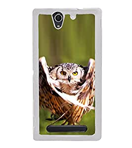 Prowling Owl 2D Hard Polycarbonate Designer Back Case Cover for Sony Xperia C4 Dual :: Sony Xperia C4 Dual E5333 E5343 E5363