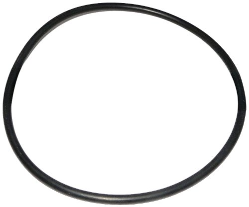 Zodiac R0558800 Pot Lid O-Ring Replacement for Select Zodiac Jandy PHP Series Pool and Spa Pumps (Jandy Pot Lid compare prices)