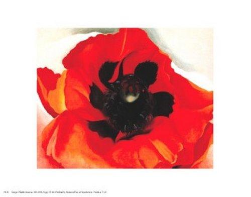 Georgia O'Keeffe - Poppy Fine Art Print (35.56 x 27.94 cm)