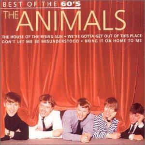 Animals - 60