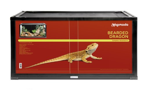 komodo-bearded-dragon-advanced-kit