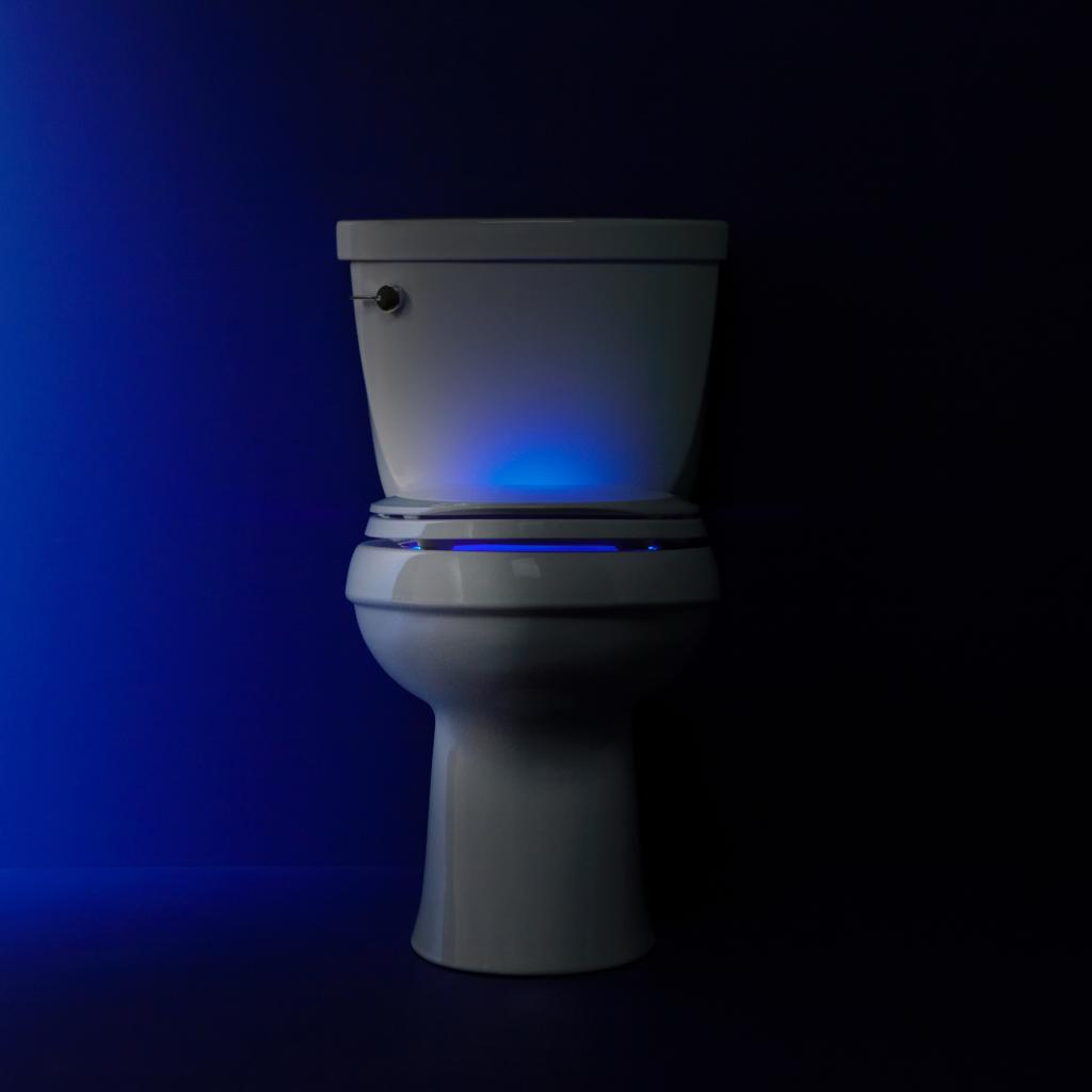 Led Lighted Elongated Toilet Seat White Illuminated Kohler
