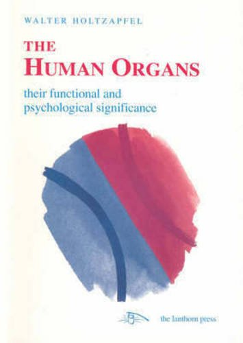 The Human Organs: Their Functional and Psychological Significance: Liver, Lung, Kidney, Heart