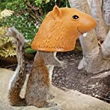 Game/Play Accoutrements Big Head Squirrel Feeder Kid/Child