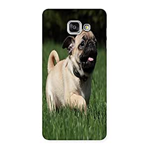 Unicovers Vodadog Back Case Cover for Galaxy A7 2016