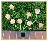 Sohodecor Decorative Garden Tulip Solar Lights 8 LED