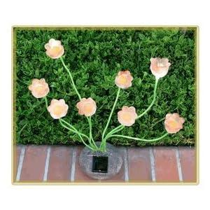 Sohodecor Decorative Garden Tulip <a href=