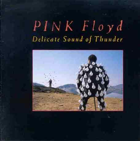 Pink Floyd - Delicate Sound of Thunder (CD01) - Zortam Music