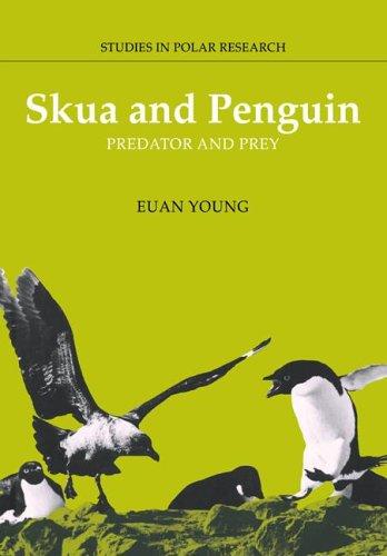 Págalo y Pingüino: depredadores y presas (estudios en Investigación Polar)