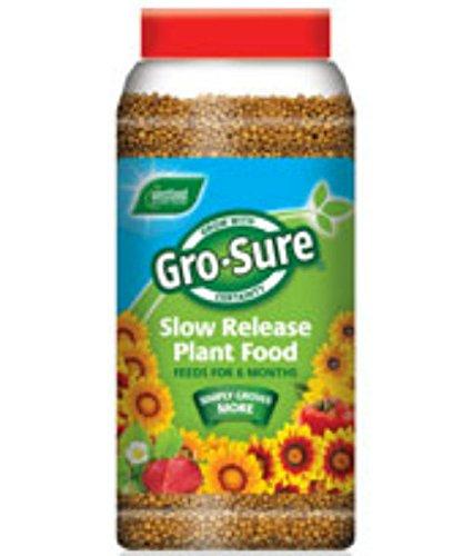 gro-seguro-occidentalbajo-6-meses-lenta-liberacion-planta-de-1-kg
