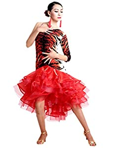 Honeystore 2016 Neuheiten Danmen One Shoulder Tiered Swing Rhythmus Latin Dance Kleid