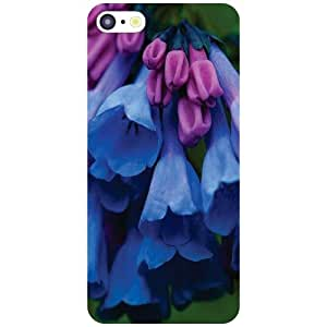 Printland Classy Phone Cover For Apple iPhone 5C