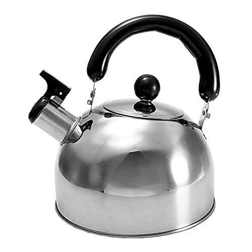 2 Liter Stainless Steel Tea Kettle Water Pot