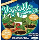 DuneCraft Outdoor Garden Kit Tomato, Bush Bean and Sweet Pepper