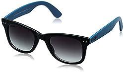 MTV Roadies Wayfarer Sunglass (Black and Blue) (RD-112-C9)