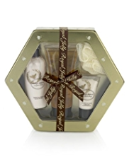 Royal Jelly Hexagon Tin Gift