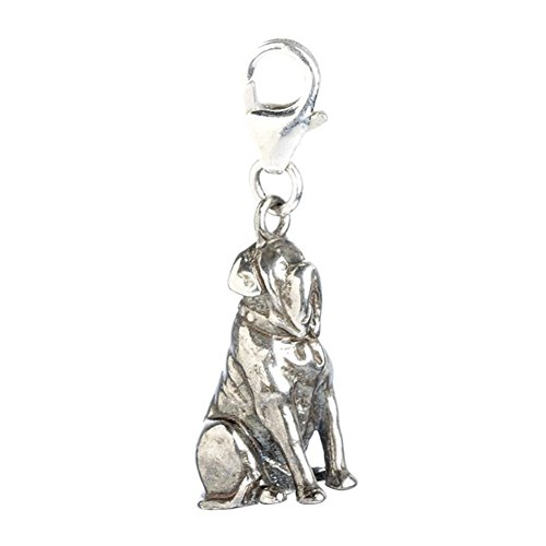 Official Harry Potter Sterling Silver Hagrids Fang Dog Clip on Charm - Boxed