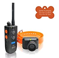 Dogtra Brand Remote Training Packages (For a Max of 4 Dogs, and Up to 1 Mile Range)