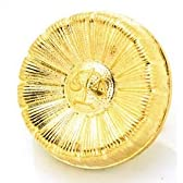 逆転裁判 コスプレ ヒマワリ 徽章 ピンバッジ バッジケース付 道具 小物 弁護士 バッチ 金 ゴールド