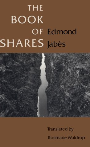 The Book of Shares (Religion and Postmodernism Series) PDF