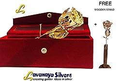 Lavanaya Silver