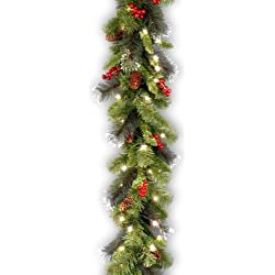 National Tree Crestwood Spruce Garland with Silver Bristle, Cones, Red Berries and Glitter with 50 Clear Lights, 9-Feet x 10-Inches (CW7-306-9A-1)