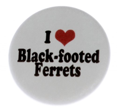 A&T Designs Unisex - I Love Black-footed Ferrets 1.25