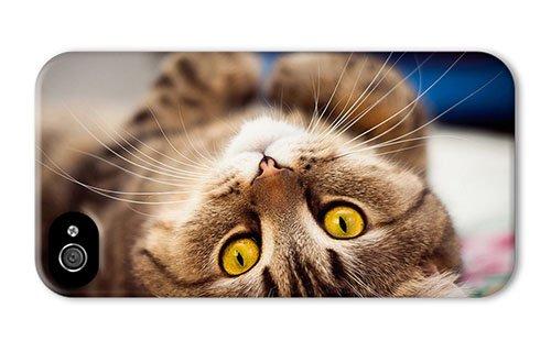 Luxury Cat Beds 8720 front