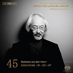 Bach, J.S.: Cantatas, Vol. 45