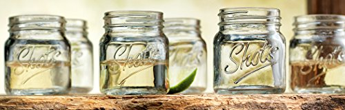 Palais Glassware Palais 'Shots' Mason Jar Shot Glasses - Mini Shot Glass Cups - Holds 2.4 Oz - Set of 6 (Clear) (Cute Mason Jars compare prices)