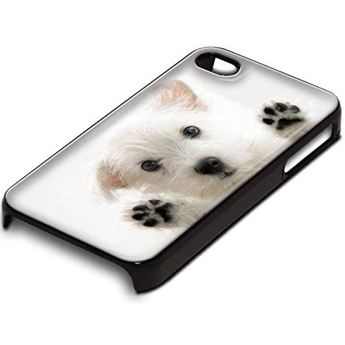 Weißen Hund, Schwarz Handyhülle Schutzhülle Schale Fall Hard Case mit Farbig Entwurf für Apple iPhone 4 / 4S
